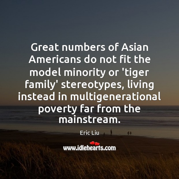 Image, Great numbers of Asian Americans do not fit the model minority or