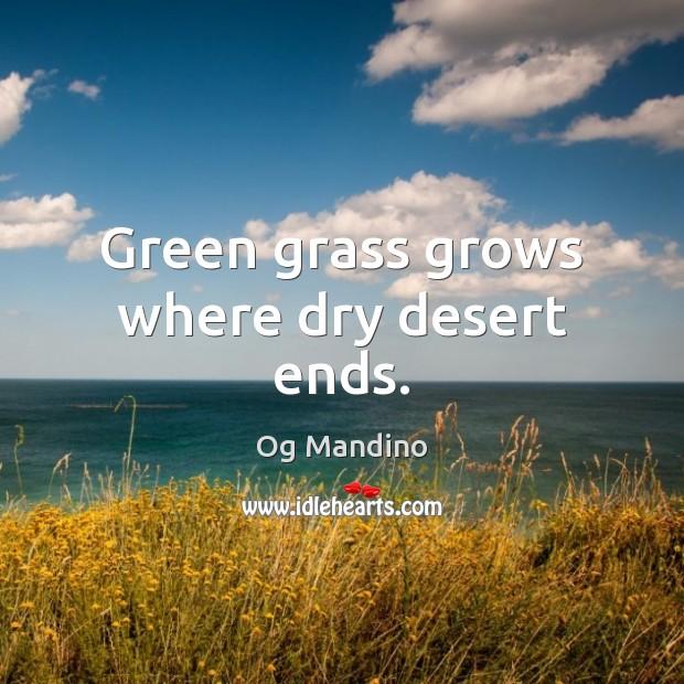 Green grass grows where dry desert ends. Image