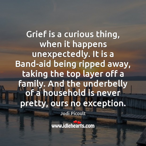 Grief is a curious thing, when it happens unexpectedly. It is a Jodi Picoult Picture Quote