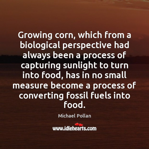 Image, Growing corn, which from a biological perspective had always been a process