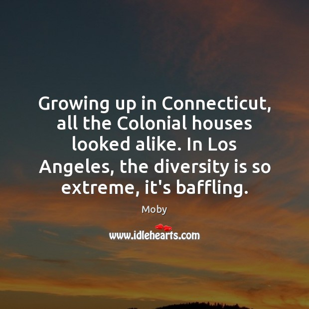 Growing up in Connecticut, all the Colonial houses looked alike. In Los Moby Picture Quote