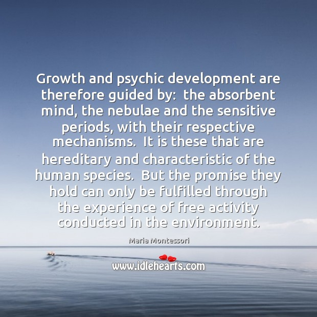 Image, Growth and psychic development are therefore guided by:  the absorbent mind, the