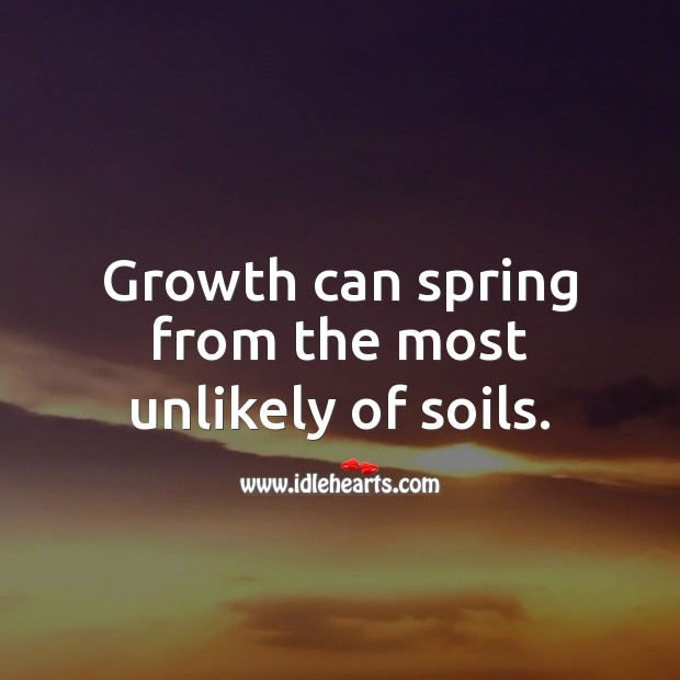 Image, Growth can spring from the most unlikely of soils.