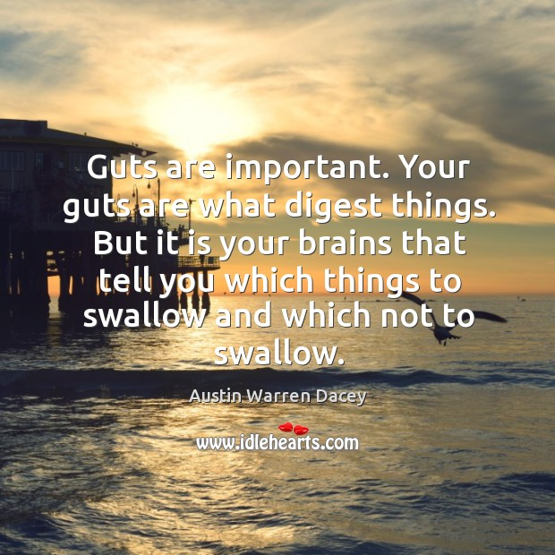 Image, Guts are important. Your guts are what digest things. But it is your brains that tell you