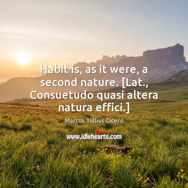 Image, Habit is, as it were, a second nature. [Lat., Consuetudo quasi altera natura effici.]