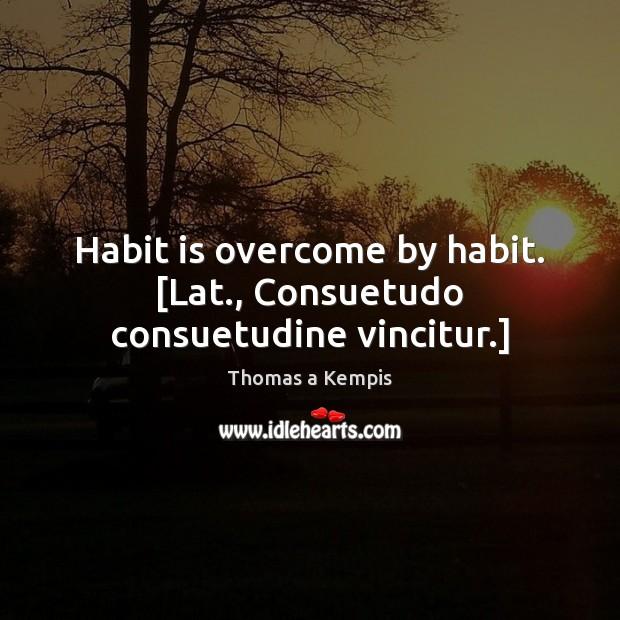 Habit is overcome by habit. [Lat., Consuetudo consuetudine vincitur.] Image