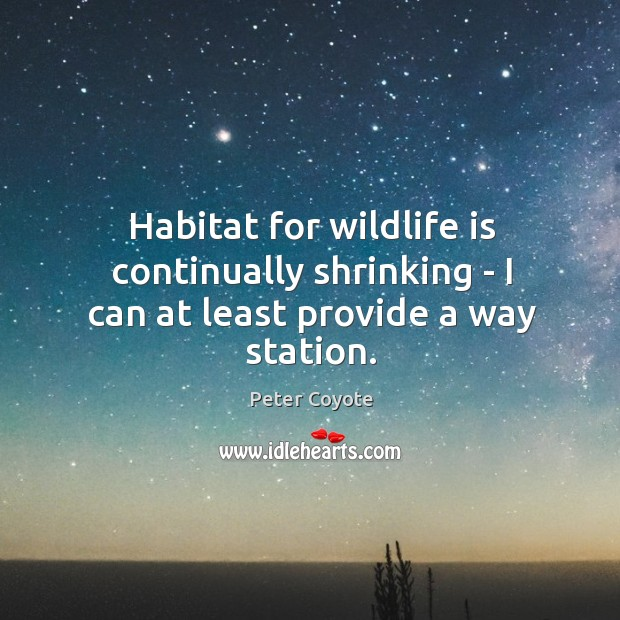 Habitat for wildlife is continually shrinking – I can at least provide a way station. Peter Coyote Picture Quote