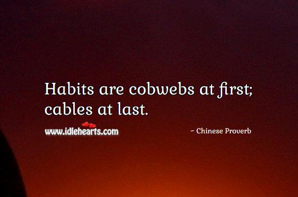 Image, Habits are cobwebs at first; cables at last.