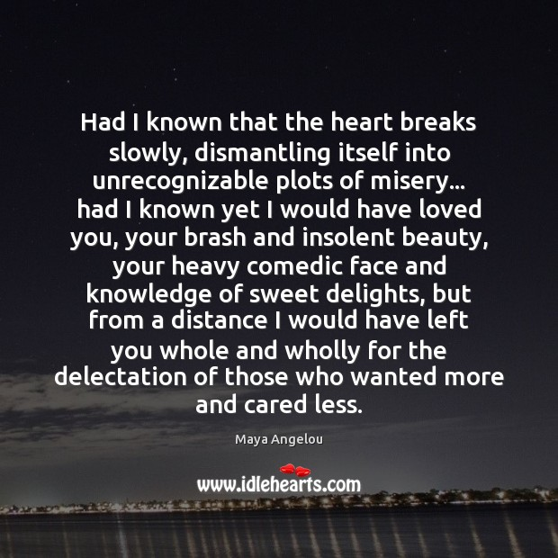 Image, Had I known that the heart breaks slowly, dismantling itself into unrecognizable