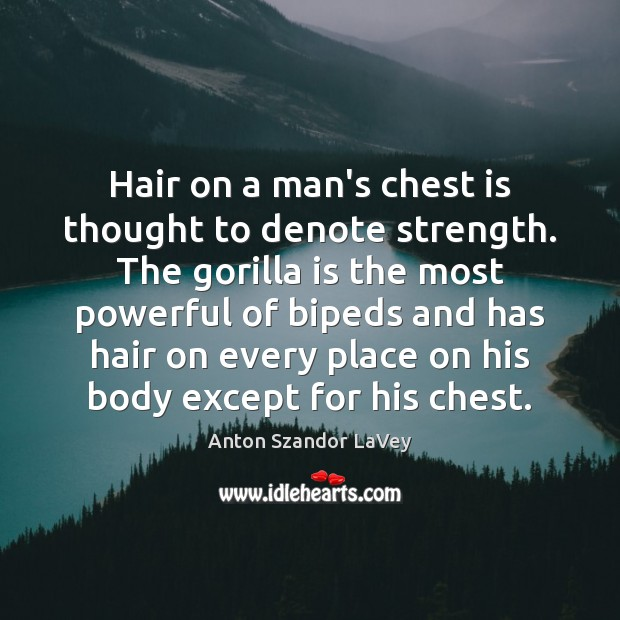 Hair on a man's chest is thought to denote strength. The gorilla Anton Szandor LaVey Picture Quote