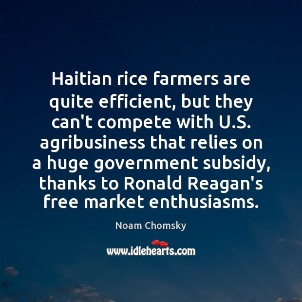 Image, Haitian rice farmers are quite efficient, but they can't compete with U.