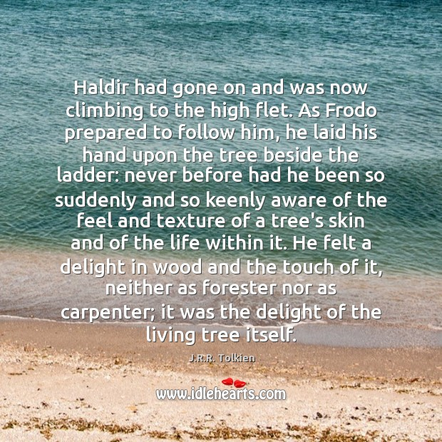 Haldir had gone on and was now climbing to the high flet. J.R.R. Tolkien Picture Quote