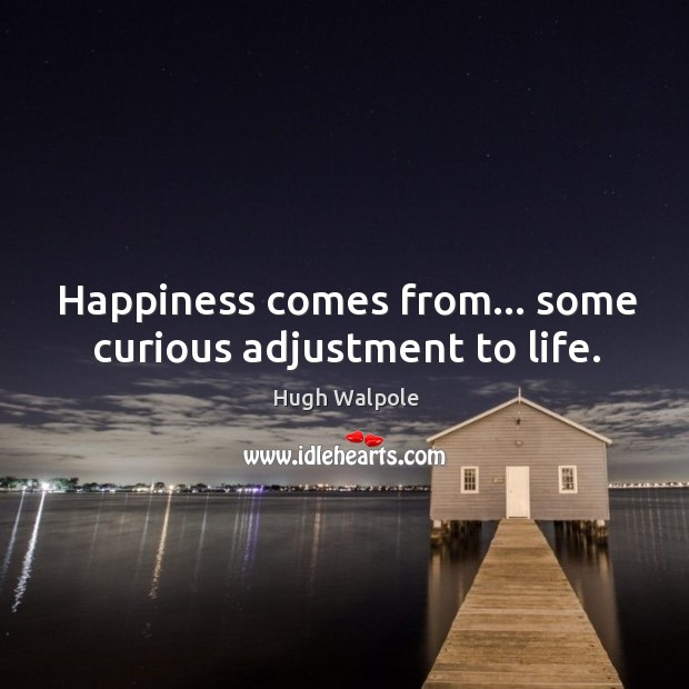 Happiness comes from… some curious adjustment to life. Image