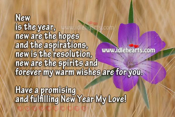 Have A Promising, Happy And Fulfilling New Year My Love!
