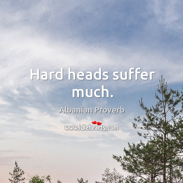 Hard heads suffer much. Albanian Proverbs Image