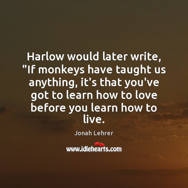 "Image, Harlow would later write, ""If monkeys have taught us anything, it's that"