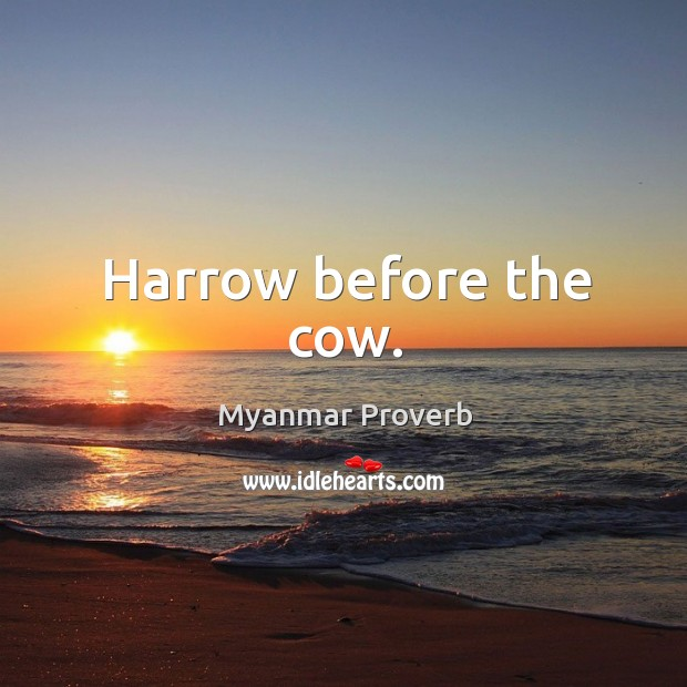 Harrow before the cow. Myanmar Proverbs Image
