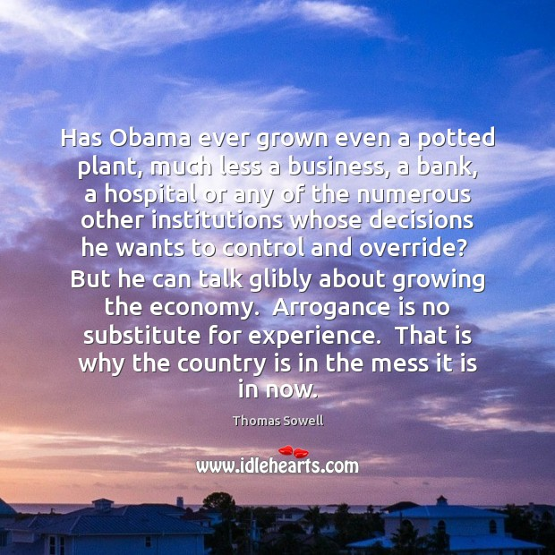 Has Obama ever grown even a potted plant, much less a business, Image