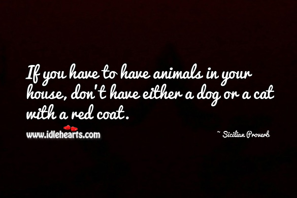 If you have to have animals in your house, don't have either a dog or a cat with a red coat. Sicilian Proverbs Image
