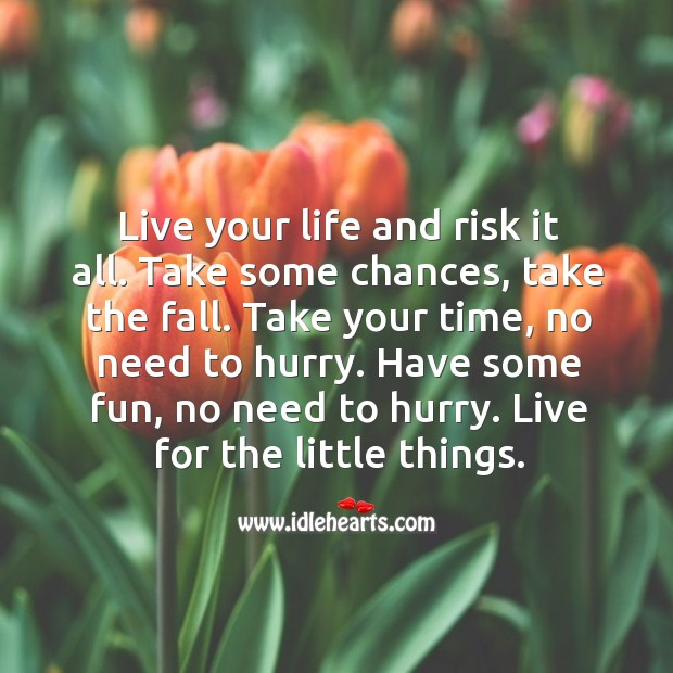 Have fun. Live for little things. Image