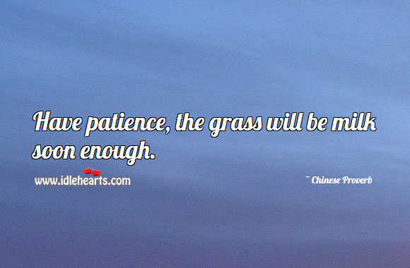 Image, Have patience, the grass will be milk soon enough.