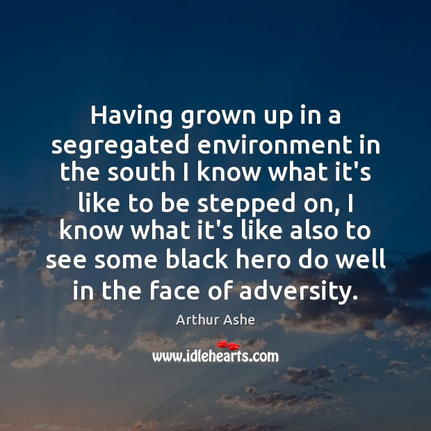 Having grown up in a segregated environment in the south I know Arthur Ashe Picture Quote