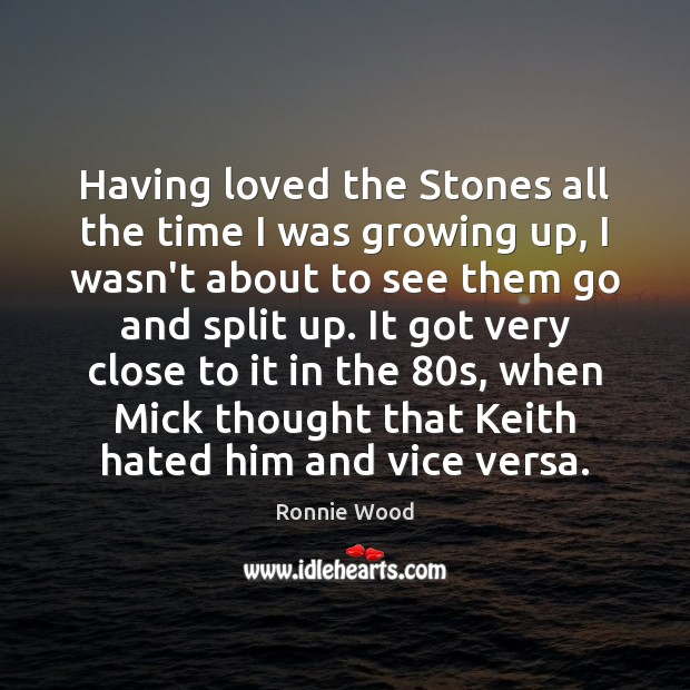 Having loved the Stones all the time I was growing up, I Image