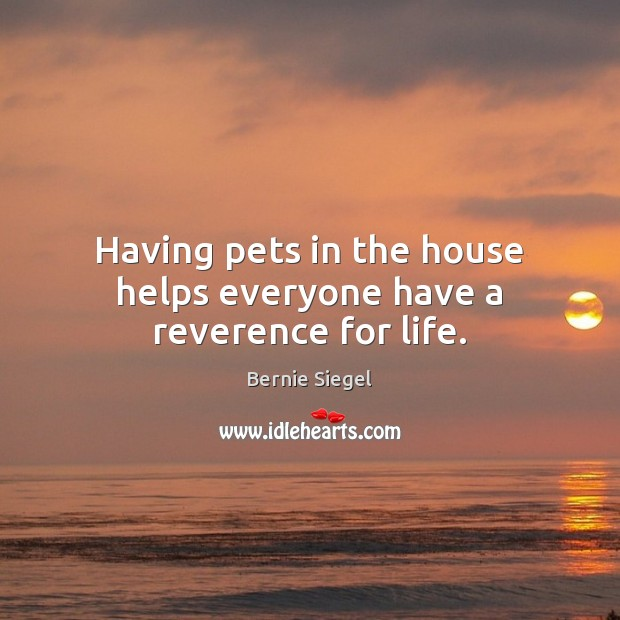 Having pets in the house helps everyone have a reverence for life. Image