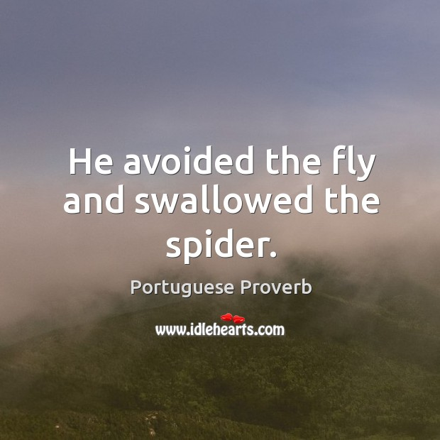 He avoided the fly and swallowed the spider. Image