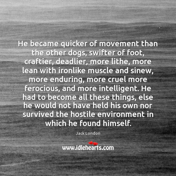 He became quicker of movement than the other dogs, swifter of foot, Jack London Picture Quote