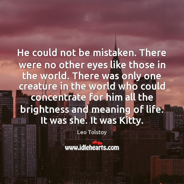 He could not be mistaken. There were no other eyes like those Leo Tolstoy Picture Quote