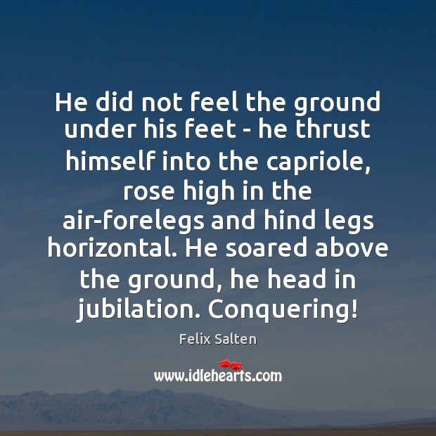 He did not feel the ground under his feet – he thrust Image