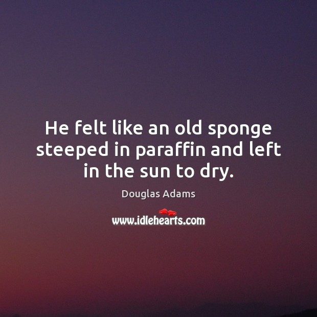 He felt like an old sponge steeped in paraffin and left in the sun to dry. Douglas Adams Picture Quote
