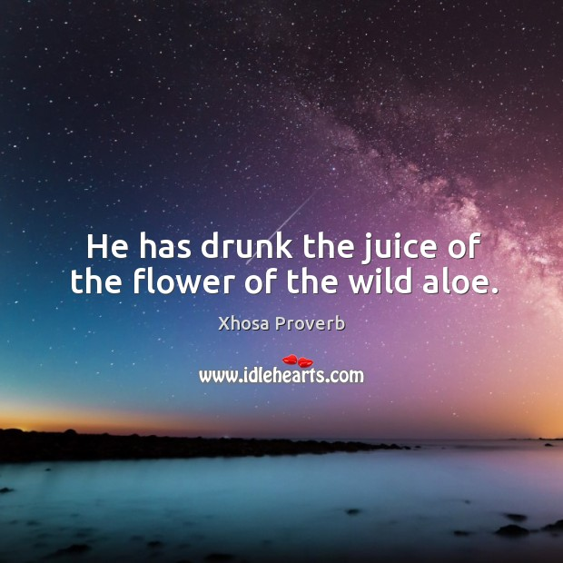 Image, He has drunk the juice of the flower of the wild aloe.