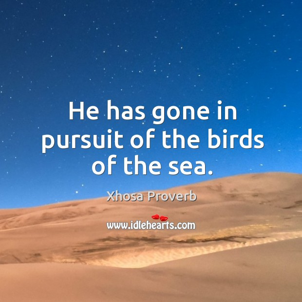 Image, He has gone in pursuit of the birds of the sea.