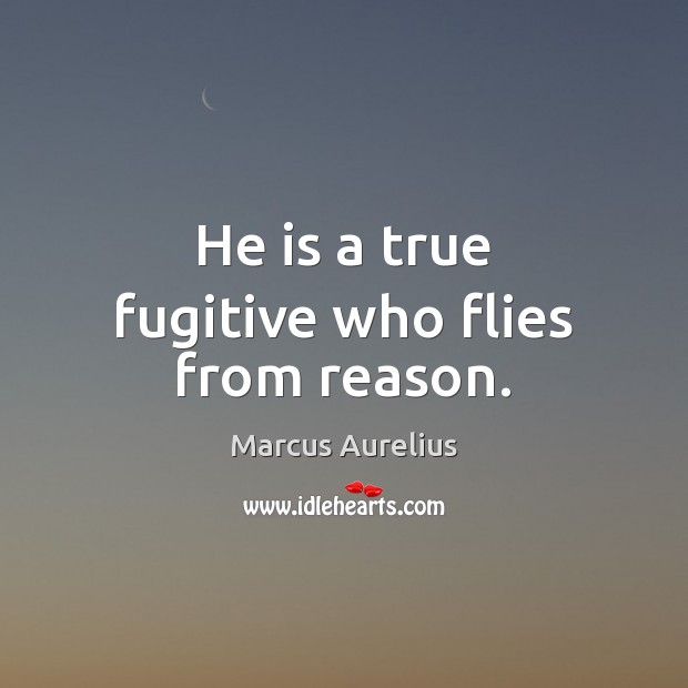 He is a true fugitive who flies from reason. Image
