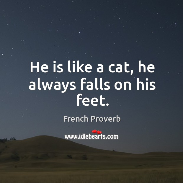 Image, He is like a cat, he always falls on his feet.