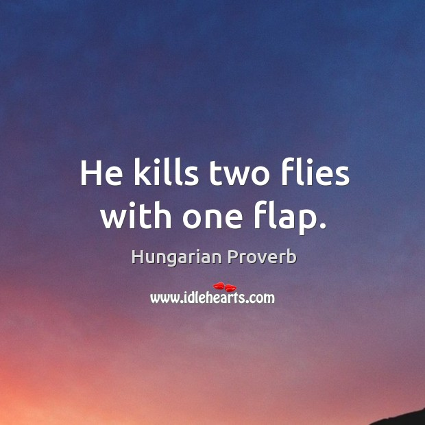 Image, He kills two flies with one flap.