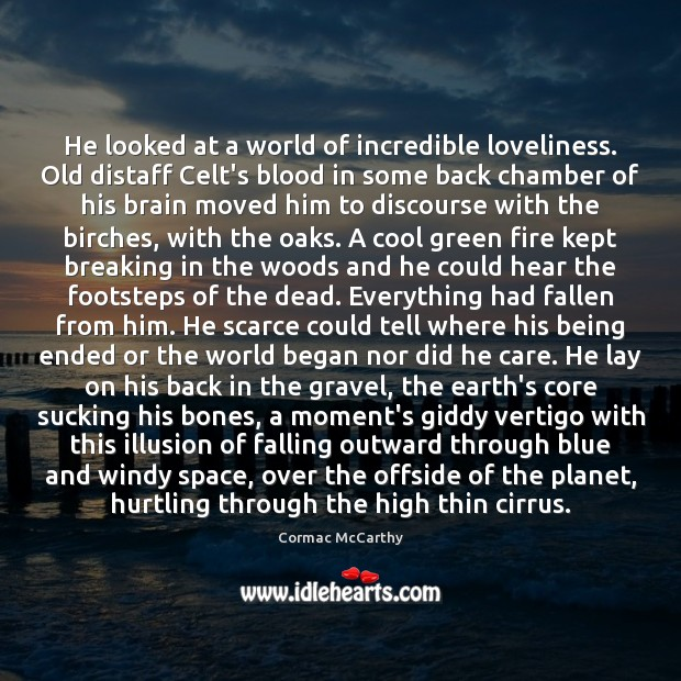 He looked at a world of incredible loveliness. Old distaff Celt's blood Cool Quotes Image
