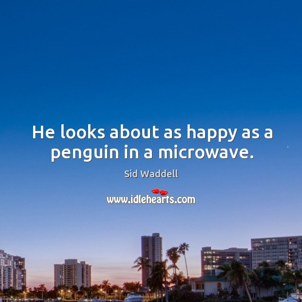 He looks about as happy as a penguin in a microwave. Image
