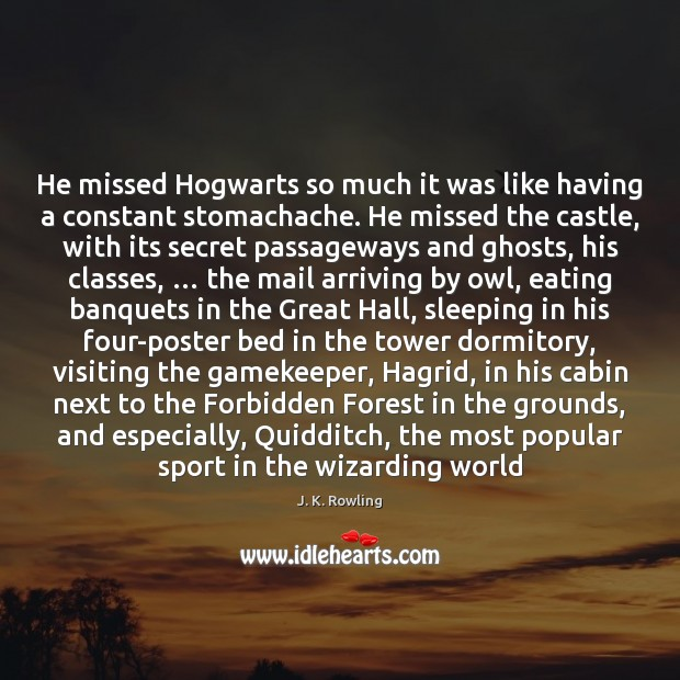He missed Hogwarts so much it was like having a constant stomachache. Image