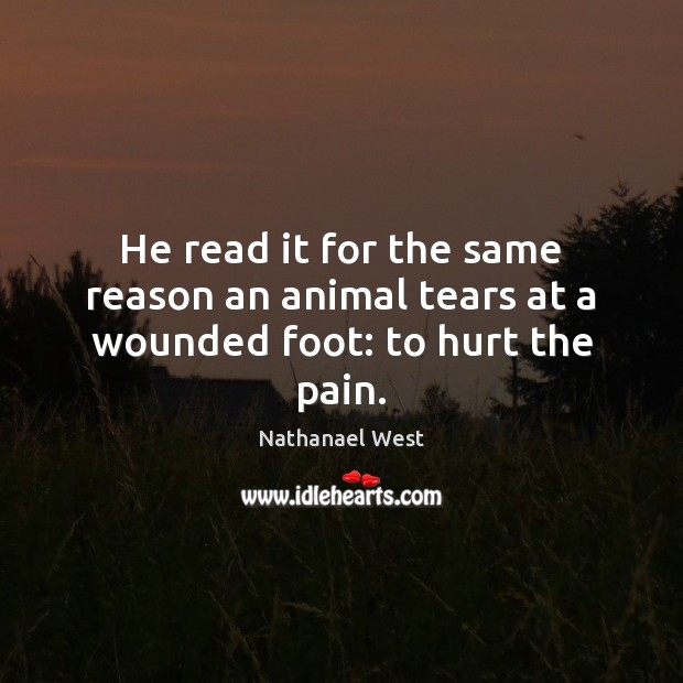 He read it for the same reason an animal tears at a wounded foot: to hurt the pain. Nathanael West Picture Quote