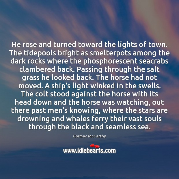 He rose and turned toward the lights of town. The tidepools bright Image