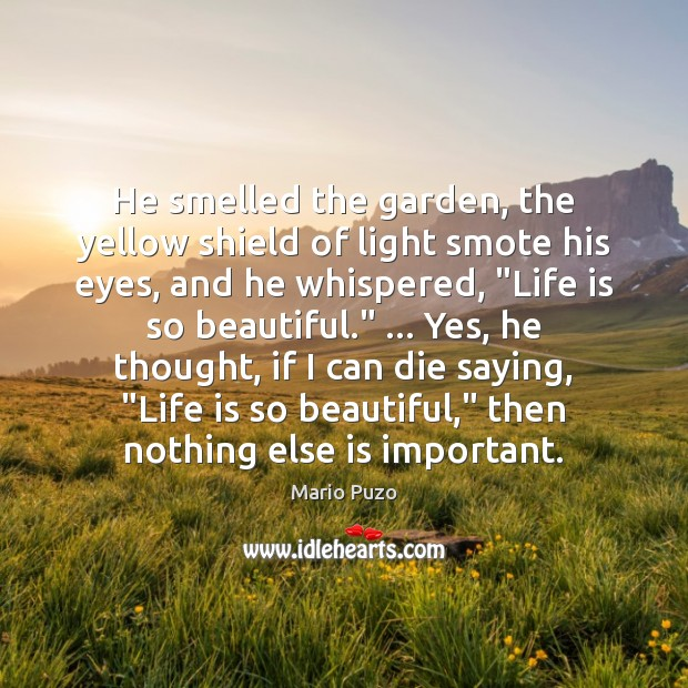 He smelled the garden, the yellow shield of light smote his eyes, Mario Puzo Picture Quote