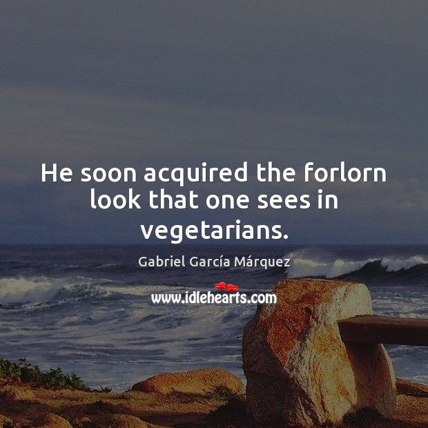 He soon acquired the forlorn look that one sees in vegetarians. Gabriel García Márquez Picture Quote