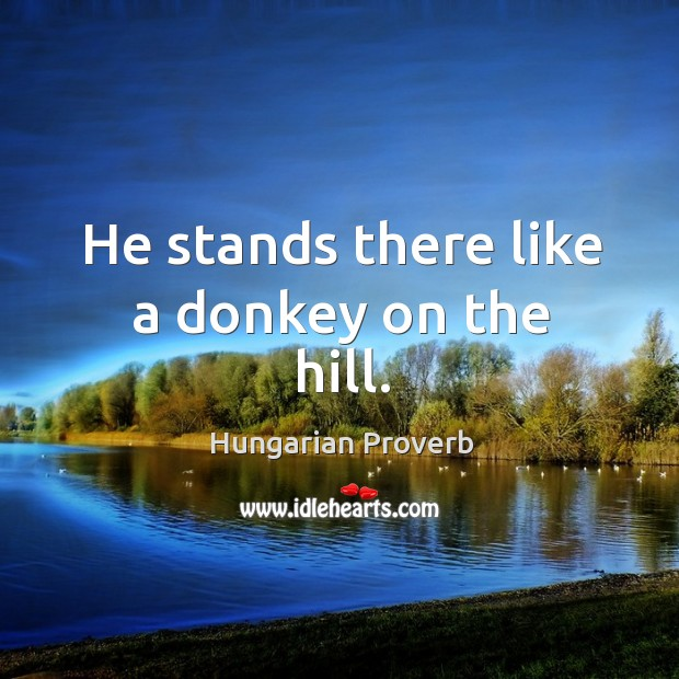 He stands there like a donkey on the hill. Image