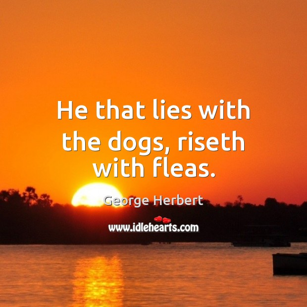 Image, He that lies with the dogs, riseth with fleas.