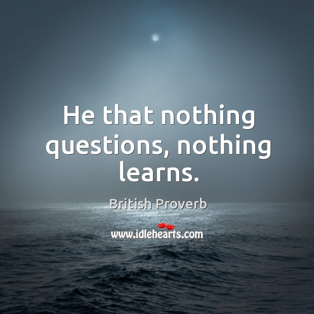 Image, He that nothing questions, nothing learns.