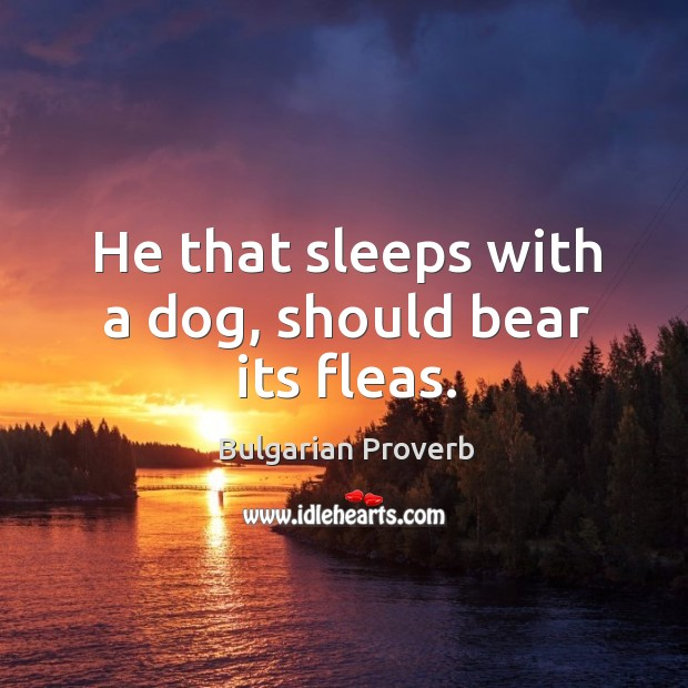 He that sleeps with a dog, should bear its fleas. Bulgarian Proverbs Image