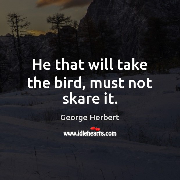 Image, He that will take the bird, must not skare it.